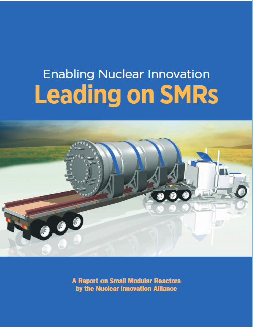 Leading on SMRs