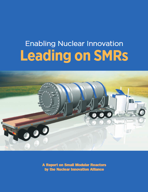 Leading on Small Modular Reactors (SMRs)